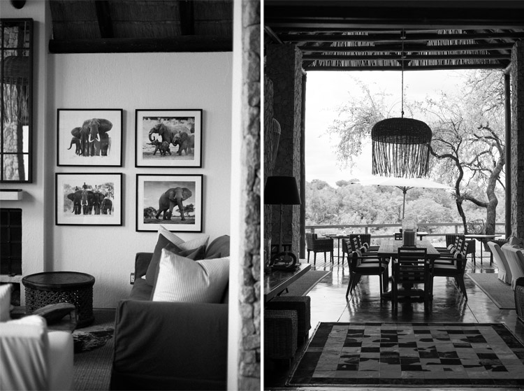 londolozi-blog-collage16